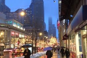 Chicago MLA 2014 1
